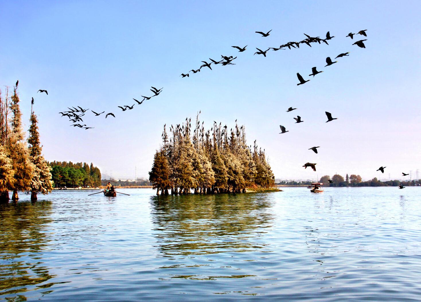 武汉旅游攻略|武汉·东湖落雁景区——去东湖落雁景区